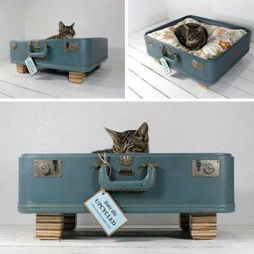 Een oud valiesje als slaap plekje