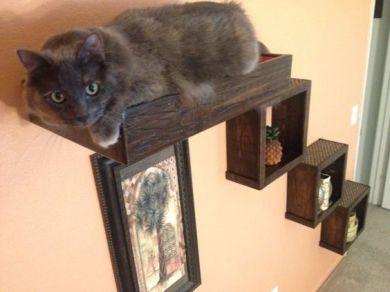een kubussen decoratie trapje.
