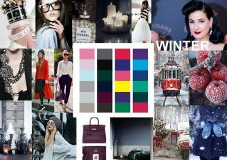 moodboard wintertype