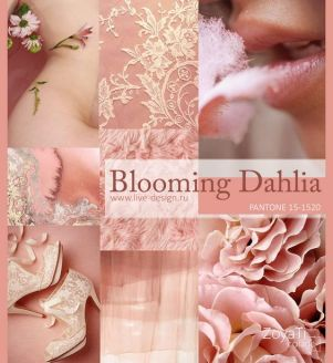 moodboard blooming dahlia lente-zomer 2018