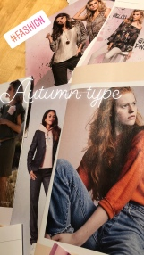 fashion moodboard herfsttype